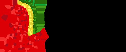 FPDE: Federação Portuguesa de Desportos Electrónicos