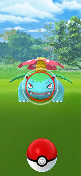 New Pokémon Snap Celebration / Pokémon GO